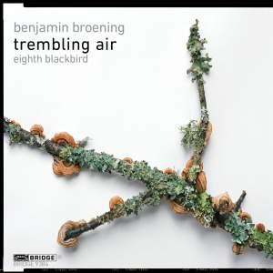 Benjamin Broening: Trembling Air