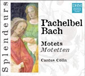Bach, J S: Motets, BWV225-230, etc.