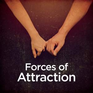Forces of Attraction Product Image