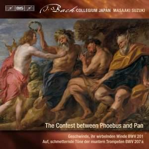 Bach - Secular Cantatas IX Product Image