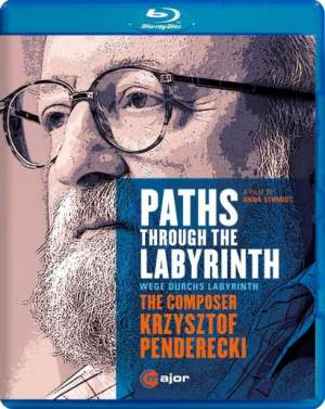 Paths Through The Labyrinth Product Image