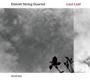 Last Leaf - Vinyl Edition