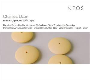 Charles Uzor: Mimikry / Pieces With Tape Product Image
