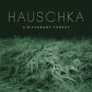 A Different Forest - Vinyl Edition