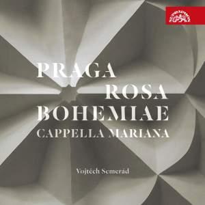 Praga Rosa Bohemiae