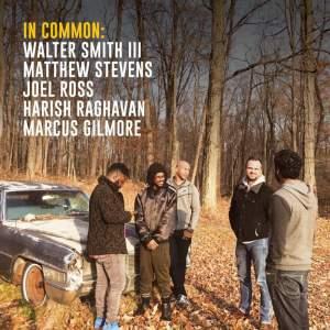 In Common - Vinyl Edition