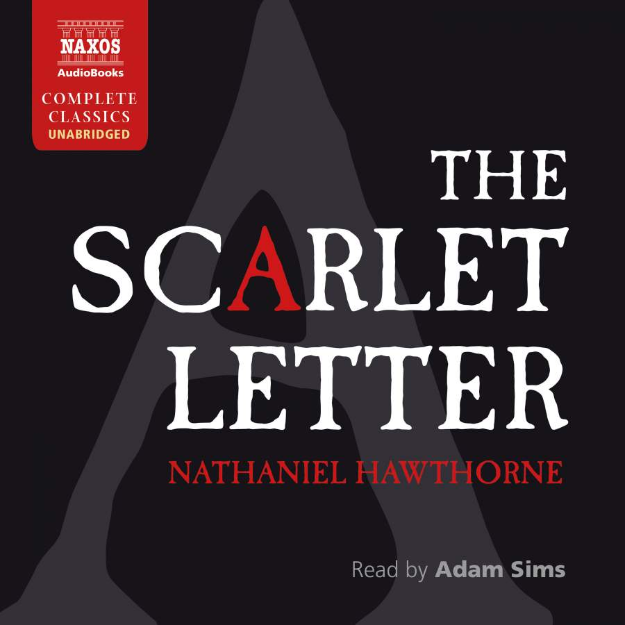 scarlet letter point of view